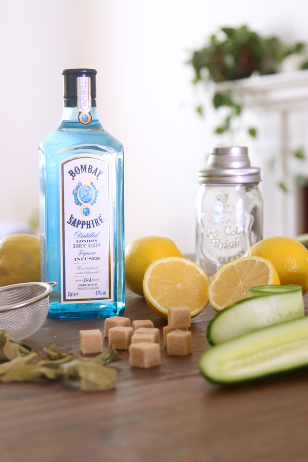 ingredientes-coctel-gin-bombay